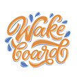 lettering logo wakeboard club in graffity style vector image
