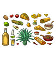 mexican traditional food and drink set tequila vector image vector image