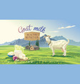 mountan landscape and goat vector image vector image