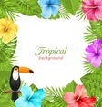 Tropical Background with Toucan Bird Colorful vector image