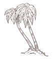 wild island nature palm trees growing from ground vector image