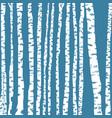 birch tree background vector image vector image
