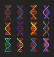 dna helix icons genetics medicine vector image vector image