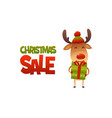 happy cute cartoon reindeer with gift present and vector image
