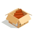 Poo in box vector image