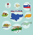 set of national profile of the slovenia vector image vector image
