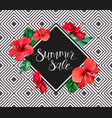 summer sale announcement poster banner flyer vector image