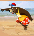 cartoon character bear in summer clothes vector image vector image