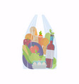 cellophane bag with foods healthy organic fresh vector image