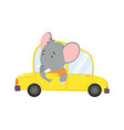 colored kids transport with cute little elephant vector image