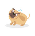 cute funny pug dog character wagging the tail pet vector image vector image