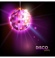 Disco ball vector image