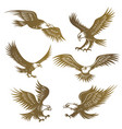 eagles stylized flying wild freedom birds hawk vector image
