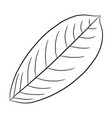 leaf of plant from the contour black brush lines vector image vector image
