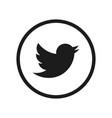 social media symbol twitter vector image