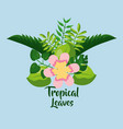 tropical leaves foliage palm plant exotic poster vector image