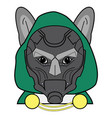 villain symbol with hood metal mask and cape vector image