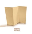 Blank tri-fold brochure design isolated vector image