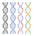 DNA Genome Molecules Set vector image vector image