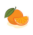 orange fruit vector image vector image