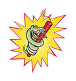 Rattle Snake Coiling Dynamite Cartoon vector image vector image