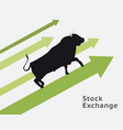bull stock concept vector image vector image