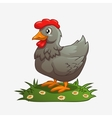 Chicken gray vector image