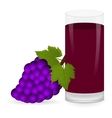 grapes and fruit juice vector image