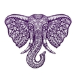 Hand drawn front view head elephant with ornament vector image vector image