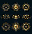 luxury calligraphic monograms and logos in gold vector image vector image