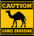 road sign - attention animal camels crossing
