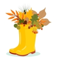 with autumn leaves and rubber vector image vector image