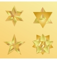 3d golden star set with variations vector image vector image