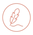 Feather line icon vector image