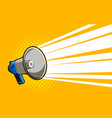 loudspeaker megaphone advertising announcement vector image