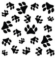 paw print seamless vector image vector image