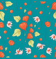 seamless pattern autumn physalis flowers leaves vector image vector image