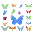 Triangle polygonal butterflies vector image vector image