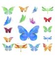 Triangle polygonal butterflies vector image vector image