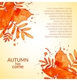 Autumn watercolor rowan leaves and spray vector image