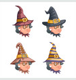 cartoon witch with granny characters set design vector image vector image