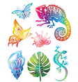 colored objects of nature vector image vector image