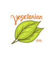 healthy organic food or labels and elements for vector image vector image