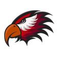 Professional sports logo hawks vector image