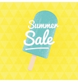 Summer Sale triangular background with ice vector image vector image