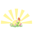 sun with flowers and butterfly vector image