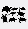 Turtle and tortoise animal silhouettes vector image vector image