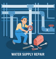 water supply repair vector image vector image