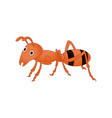 ant cartoon isolated on white background vector image vector image
