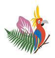 cartoon parrot with a tufted head and colorful vector image vector image